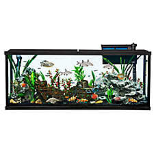 Aquariums fish tanks stands petsmart for 55 gallon fish tank starter kit
