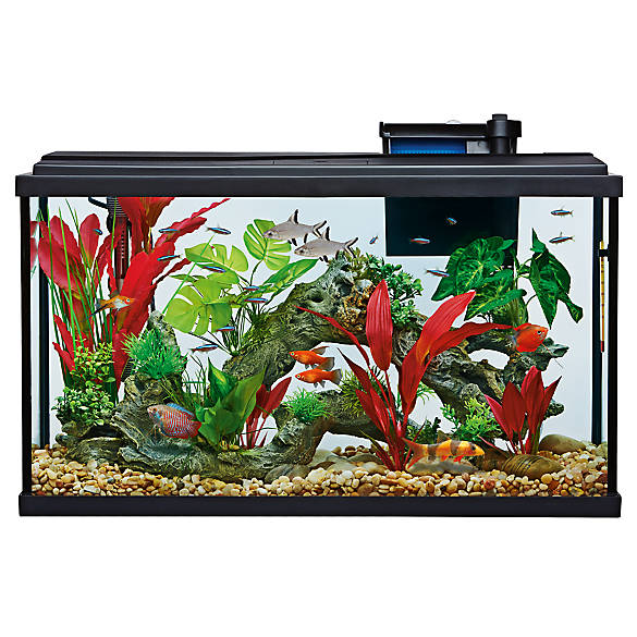 top fin aquarium starter kit fish starter kits petsmart. Black Bedroom Furniture Sets. Home Design Ideas