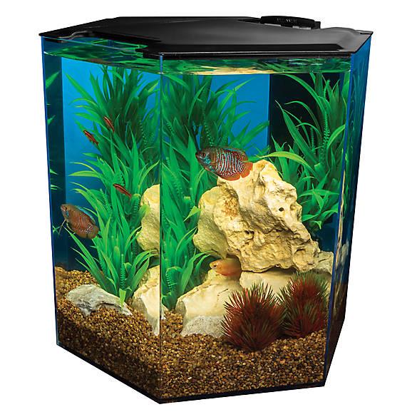 Marineland 5 gallon escape hexagon aquarium fish for 5 gallon fish tank petsmart