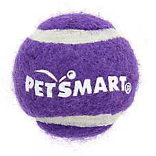 Grreat Choice® Tennis Ball Cat Toy (COLOR VARIES)