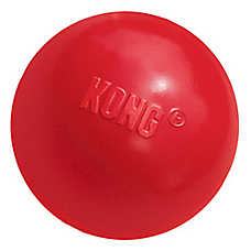 KONG® Ball Dog Toy