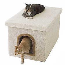 Millers Cats Cat Litter Box