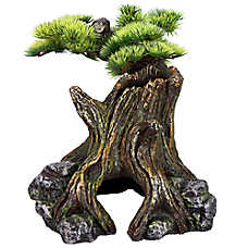 All Living Things® Bonsai Reptile Ornament