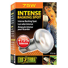 Exo Terra® Intense Basking Spot Light