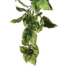 Exo Terra® Reptile Terrarium Amapallo Plant Replica