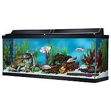 Top Fin® 50 Gallon Hooded Aquarium