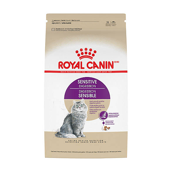 Petsmart Rotal Canin Special Dry Cat Food