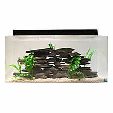 SeaClear 40 Gallon Aquarium