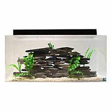 Seaclear 50 gallon aquarium and skimmer box fish for Petsmart fish guarantee