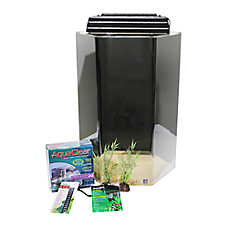 SeaClear Hexagon Tank 20 Gallon Aquarium Kit