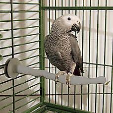 K&H Manufacturing Heated Bird Perch