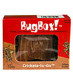 Bug in a Box Crickets
