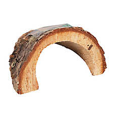 All Living Things® Wood Reptile Ornament