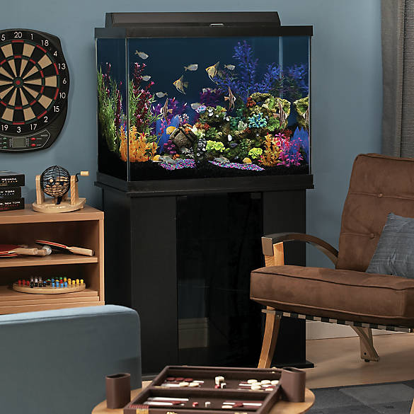 Marineland 56 gallon column aquarium ensemble fish for Jackson galaxy petsmart