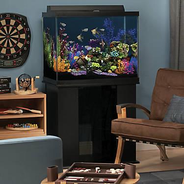 Marineland 174 56 Gallon Column Aquarium Ensemble Fish