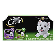 Cesar® Canine Cuisine Dog Food - MultiPack