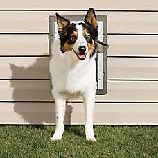PetSafe® Wall Entry Pet Door