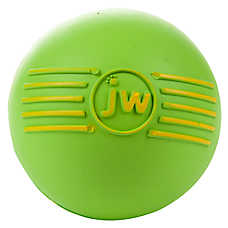 JW Pet® iSqueak Ball Dog Toy (COLOR VARIES)