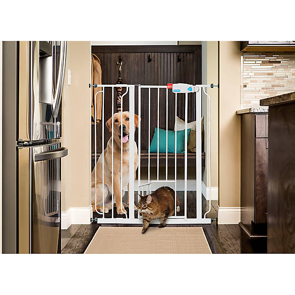 Carlson Pet Products Extra Tall Walk Thru Pet Gate Dog