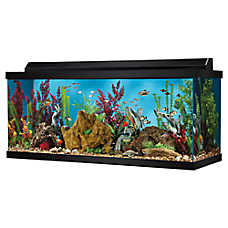 Top Fin® 75 Gallon Hooded Aquarium