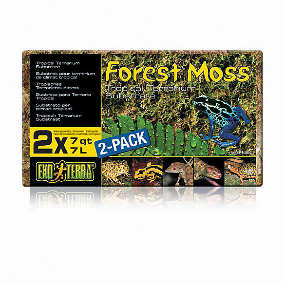 Exo Terra® Forrest Moss Tropical Reptile Terrarium Substrate | Tuggl