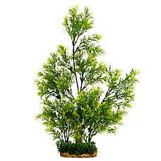 Top Fin® Base Hedge Aquarium Plant