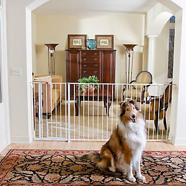 Carlson Pet Products Maxi Extra Tall Walk Thru Pet Gate