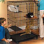 MidWest® Cat Playpen