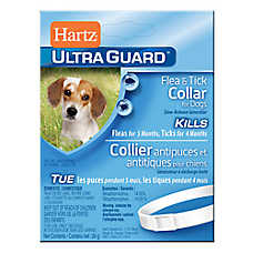 Hartz® UltraGuard® Flea & Tick Collar for Dogs