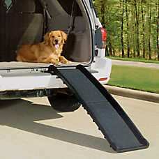 Dog Ramps Steps Stairs Amp Ramps Petsmart