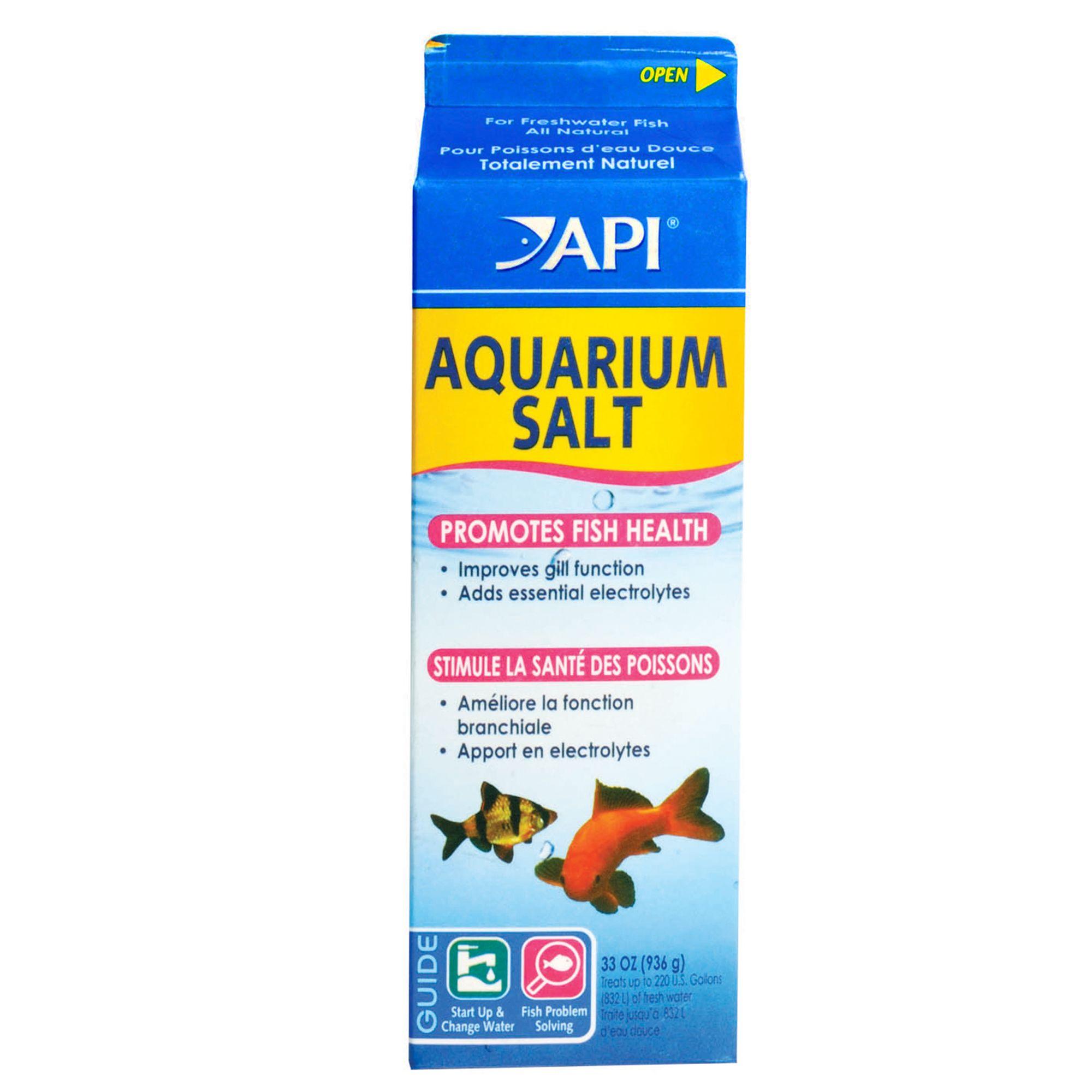 Salt Water Aquarium Care