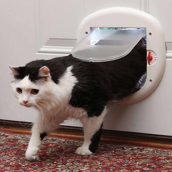 Petsafe Big Cat Large 4 Way Cat Flap Cat Doors Petsmart