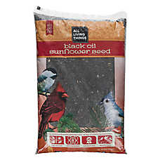 All Living Things® Black Oil Sunflower Seed Wild Bird Food