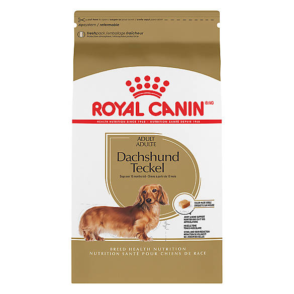 royal canin breed health nutrition dachshund adult dog food dog dry food petsmart. Black Bedroom Furniture Sets. Home Design Ideas