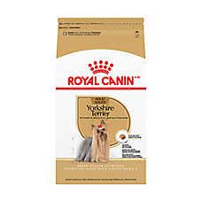royal canin breed health nutrition yorkshire terrier adult dog food dog dry food petsmart. Black Bedroom Furniture Sets. Home Design Ideas