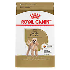 Royal Canin® Breed Health Nutrition™ Poodle Adult Dog Food