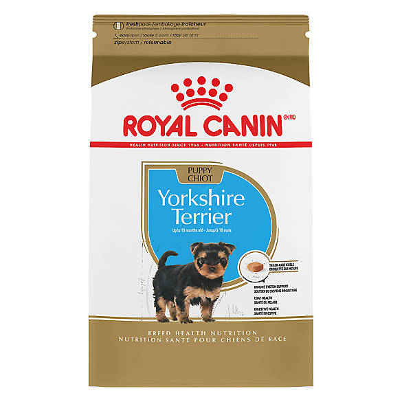royal canin breed health nutrition yorkshire terrier puppy food dog dry food petsmart. Black Bedroom Furniture Sets. Home Design Ideas