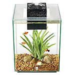 Fluval® 5 Gallon Chi Aquarium Kit