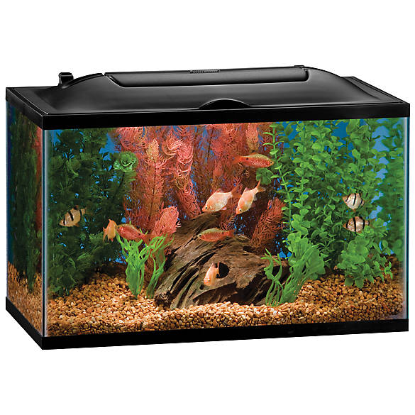 Marineland 10 gallon biowheel led aquarium kit fish for Petsmart fish filters