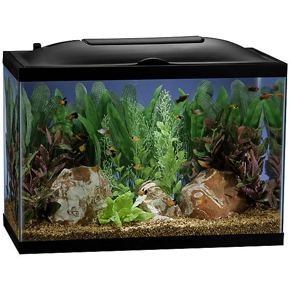 Marineland 20 gallon biowheel led aquarium kit fish for 20 gallon fish tank kit