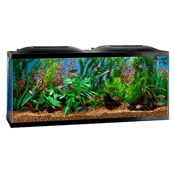 Marineland® 20 Gallon BioWheel LED Aquarium Kit | Tuggl