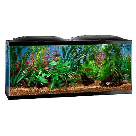 Marineland® 20 Gallon BioWheel LED Aquarium Kit   fish ...