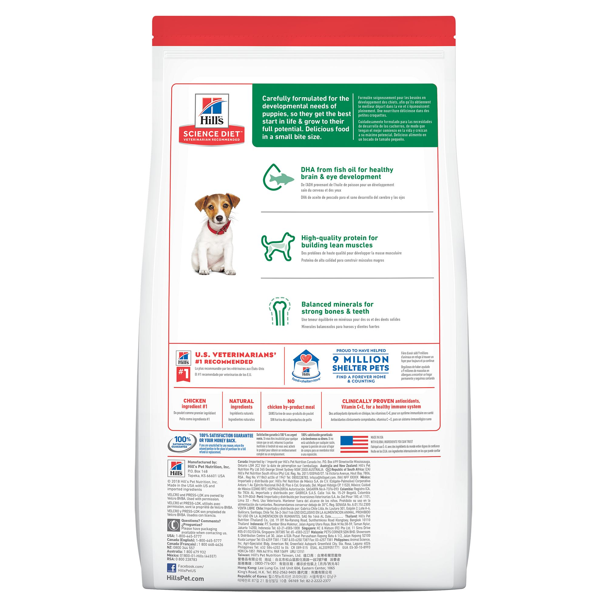 science diet puppy food small bites