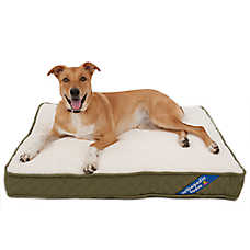 Top Paw 174 Orthopedic Pet Bed Color Varies Dog Beds