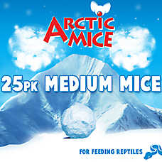 Arctic Mice Medium Frozen Mice