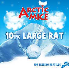 Arctic Mice Frozen Large Rats