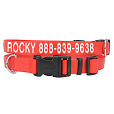 Coastal Pet Products Personalized Tough Dog Collar