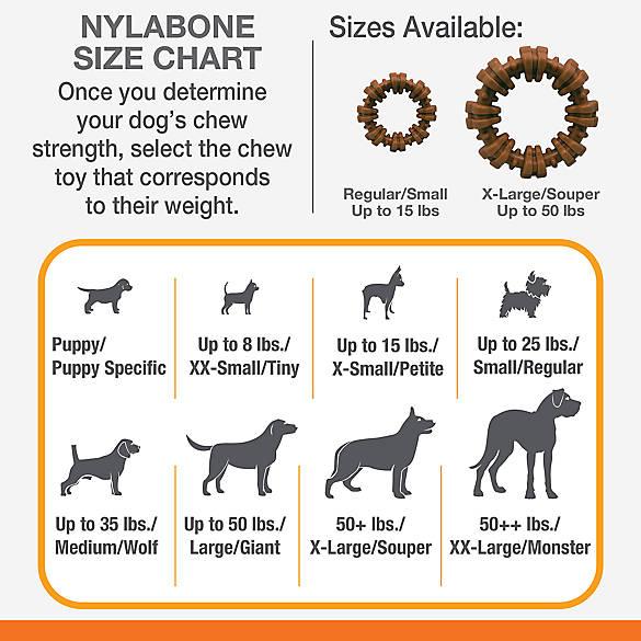 Nylabone Dura Chew Textured Dog Chew X-Large