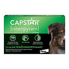 Capstar® Over 25 Lb Dog Flea Treatment