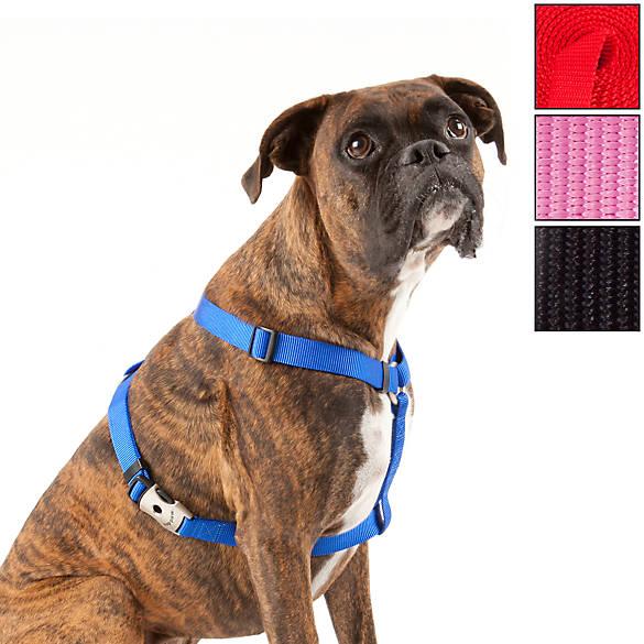 World S Best Dog Harness